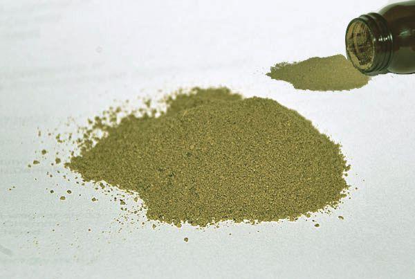Grünes Propolis Pulver - Rohpropolis aus Brasilien